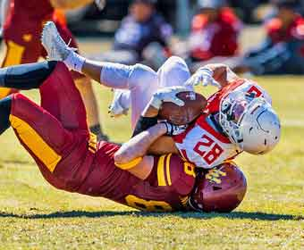 Neurological Conditions and Concussions